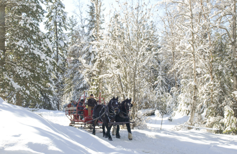 Western Pleasure Guest Ranch Sleigh Ride